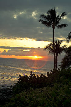 Maui Sunset by Terry Hollensworth-Rutledge