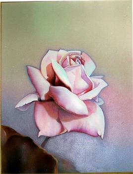 Mauve  Rose by Geri Jones