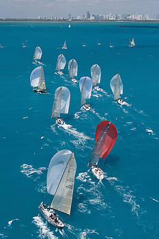 Steven Lapkin - Miami Beach Regatta