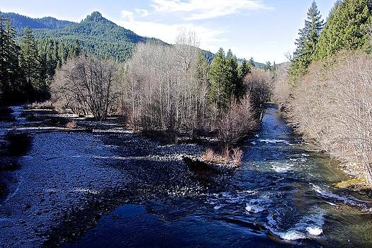 Middle Fork River  by Tim Rice