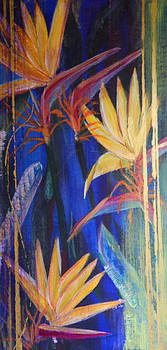 Midnight Blue by Shirley Watts