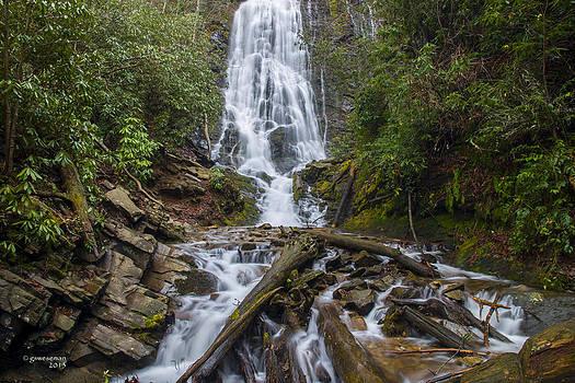 Mingo Falls by Greg Weseman