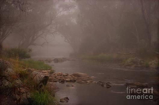Misty Morn by Blair Stuart