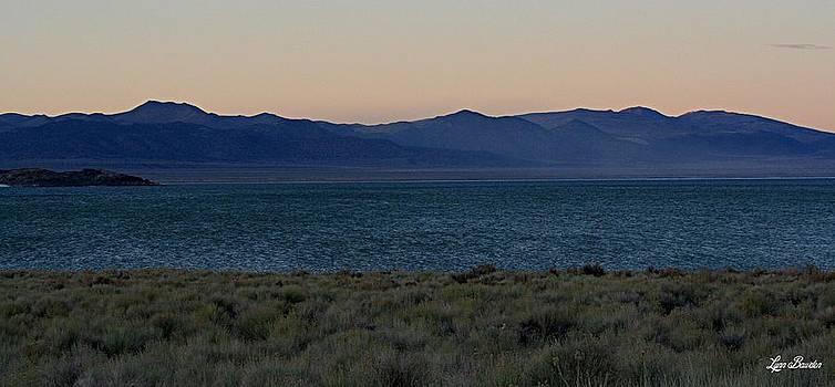 Lynn Bawden - Mono Lake