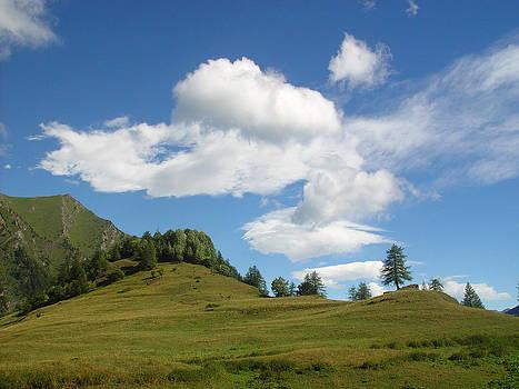 Montagna by Niki Mastromonaco