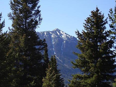 Montana Rockies by Yvette Pichette