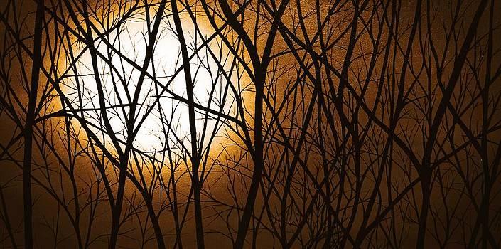 Moonlight by Justin  Strom