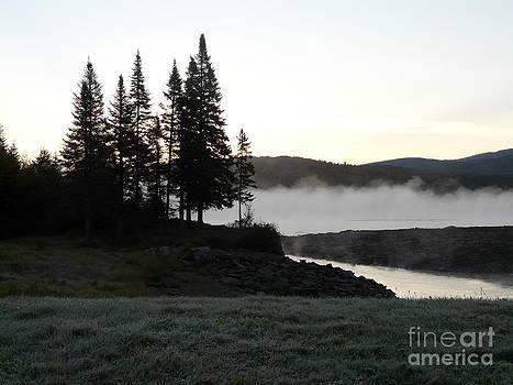 Morning Fog by Glass Slipper