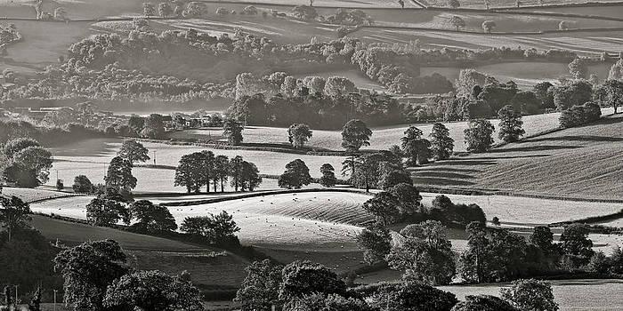 Morning light on fields by Pete Hemington