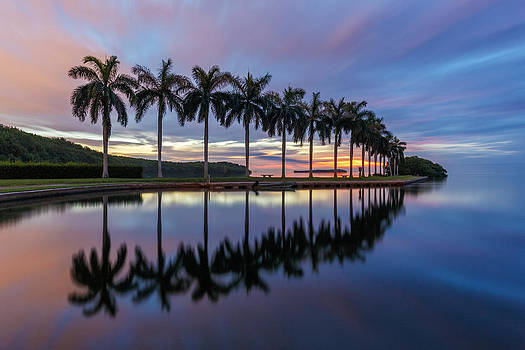 Mornings Reflections II by Claudia Domenig
