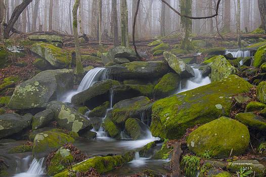 Mossy Rocks by Greg Weseman