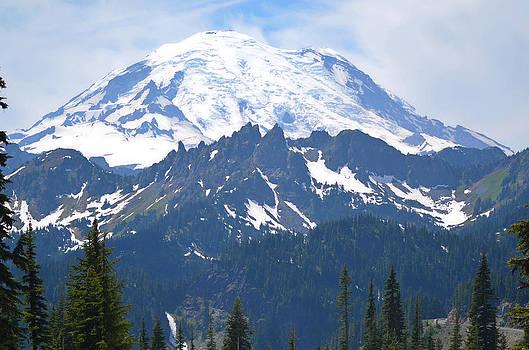 Mount Rainier by Emelyn McKitrick