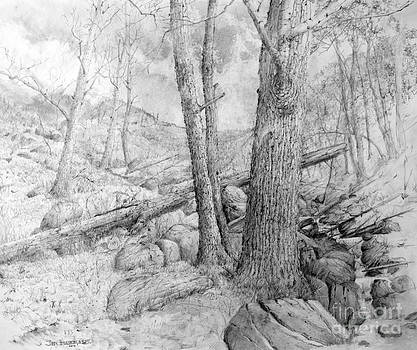Mountain Stream by Jim Hubbard
