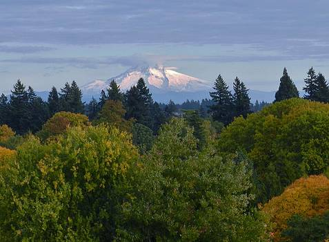 Charles Lucas - Mt. Hood Oregon