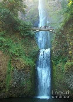 Multnomah Falls by Sandra McClure