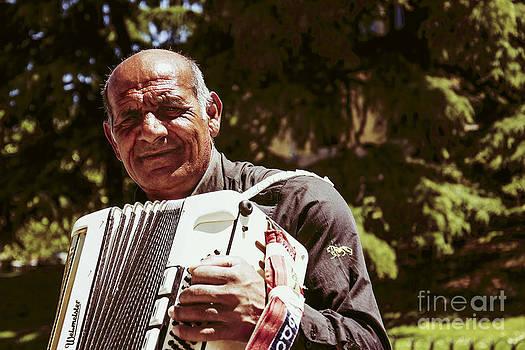 Musician by Stefano Piccini