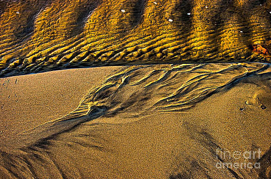Natures Abstract by Blair Stuart