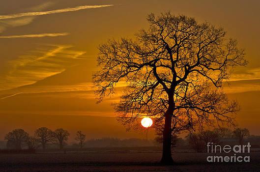 Darren Burroughs - New Year Sunrise