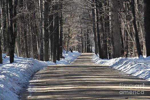 Nh Back Roads by Jeffrey Akerson