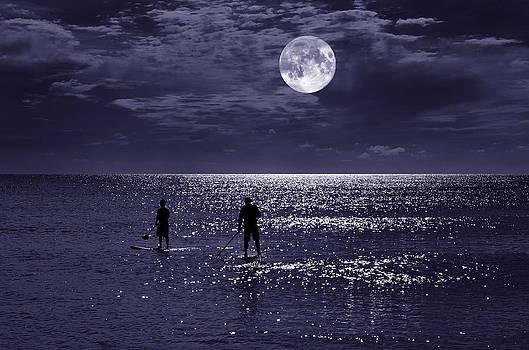 Night Boarders by Laura Fasulo