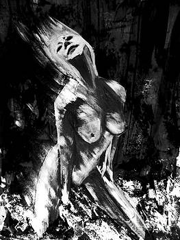 Nightdancer by Timothy Fleming