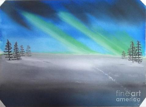 Northern Lights by John Williams