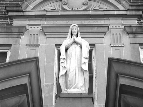 Notre Dame by Dana Doyle