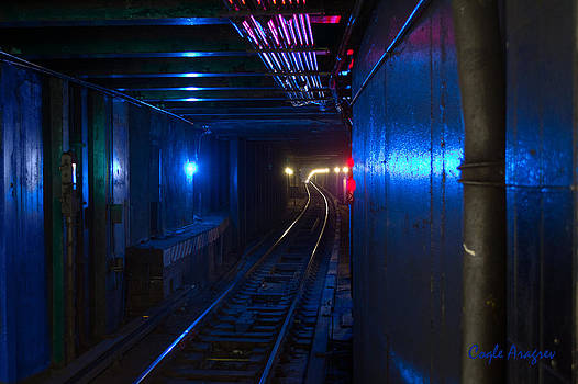 NYC Underground Colors by Coqle Aragrev
