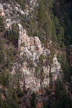 Steven Lapkin - Oak Canyon Arizona
