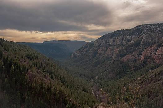 Steven Lapkin - Oak Canyon Sedona