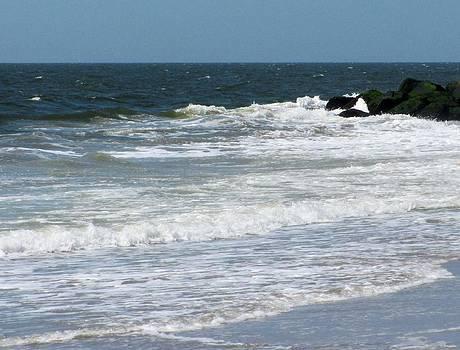 Ocean breeze  by Daisy Morales
