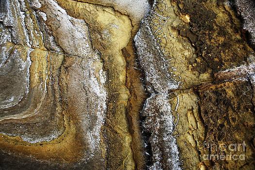 Charmian Vistaunet - Ocean Cliff Textures II