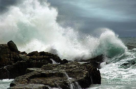 Neptune's Rath by Glenda Wright