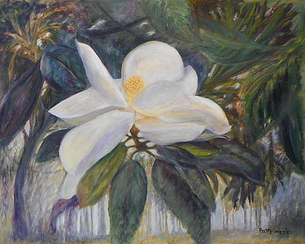 Old Florida Magnolia by Patty Weeks