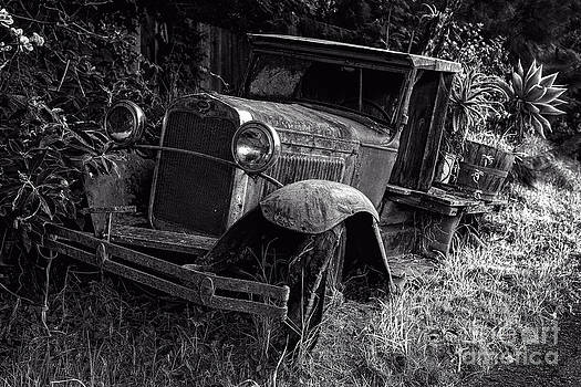 Edward Fielding - Old Model AA Ford in the Jungle Maui Hawaii