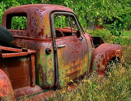 Old Rusty by Julie Dant