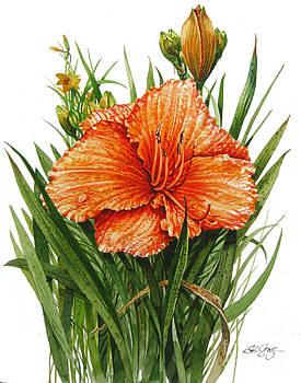 Orange Lily by Bob  George