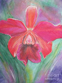 Orchid 1 by Sharon Wilkens