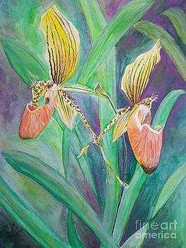 Orchid 2 by Sharon Wilkens