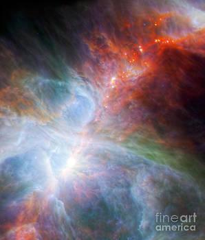 Science Source - Orion Nebula