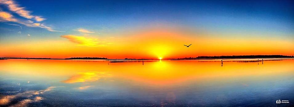 Oyster Landing Sunrise by Ed Roberts