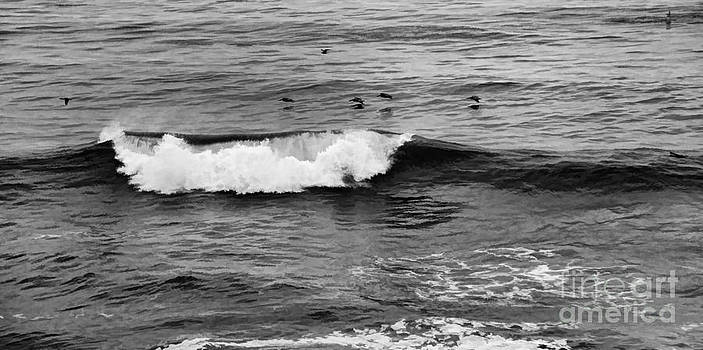 Chuck Kuhn - Pacific Ocean I