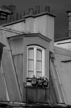 Harold E McCray - Paris Rooftop