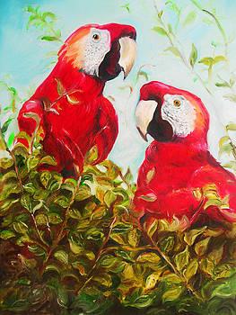Parrots by Melanie Alcantara Correia