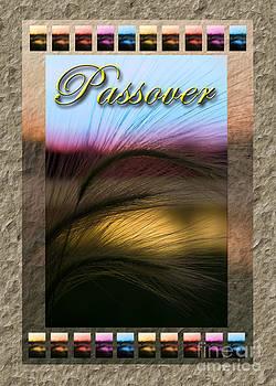 Jeanette K - Passover Grass Sunset