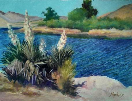 Patigonia Lake by John Marbury