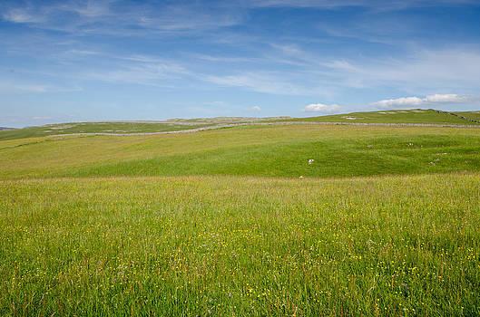 Peaceful Yorkshire by Paul Indigo