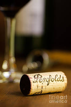 Penfolds Wine Cork Vertical by Brycia James