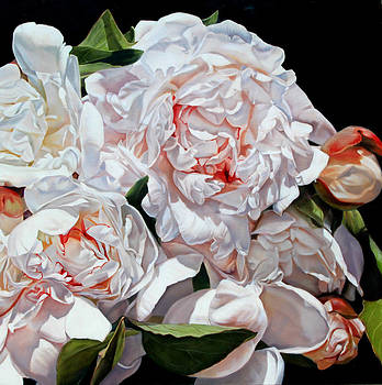peonies III,120 x 120cm by Thomas Darnell