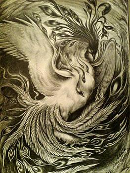 Phoenix by Sonia P